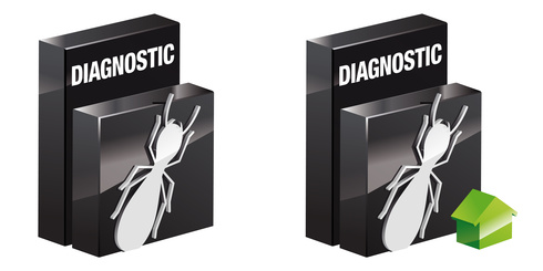 diagnostic termites rc diags. Black Bedroom Furniture Sets. Home Design Ideas